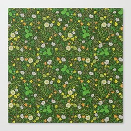 Yellow buttercup and daisies with wild strawberries on grass Canvas Print
