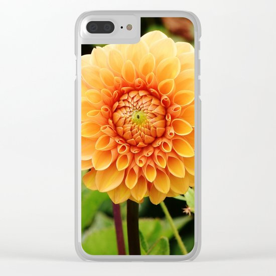 dahlias Clear iPhone Case