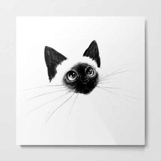 Curious Siamese Kitten Metal Print