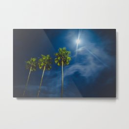 Night Moon and Palm Trees Metal Print