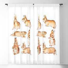 Bunnies in Tales of Peter Rabbit  characters Beatrix Potter Blackout Curtain
