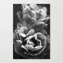 Summer Sights Canvas Print