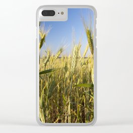green yellow rye Clear iPhone Case