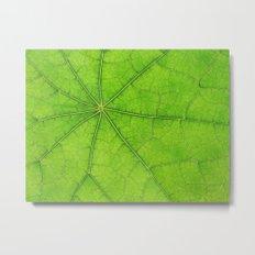Green Leaf Veins 03 Metal Print