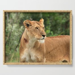 Proud Lioness Serving Tray