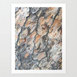 platanus skin Art Print