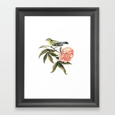 Watercolor illustration with bird and flower Framed Art Print