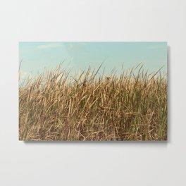 Texas Prairie Grass Metal Print