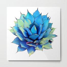 Blue Agave Study Metal Print