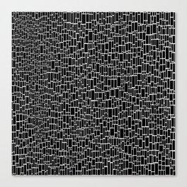 Black & White 9 Canvas Print