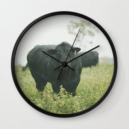 Bovine Fun Wall Clock