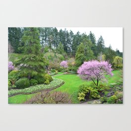 A botanical garden in spring time. Pink flowering trees, and green plants landscape. Canvas Print