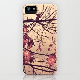 Autumn Falls iPhone Case