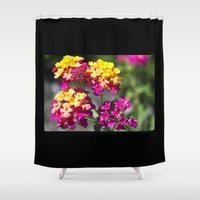 ombre Shower Curtains featuring Ombre by Darkest Devotion