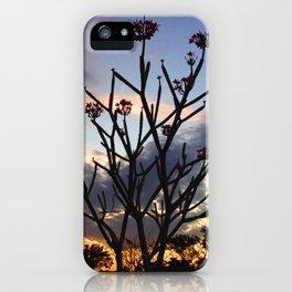 Flor de los Ancianos iPhone Case