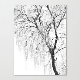 White snow tree Canvas Print