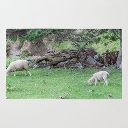 Grazing Sheep, New Zealand Rug