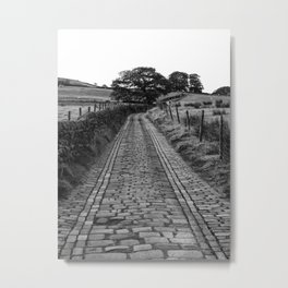 Cobblestone Country Lane Metal Print
