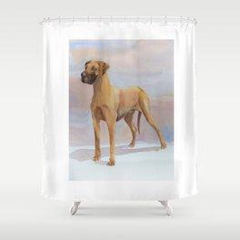 Great dane - yellow Shower Curtain