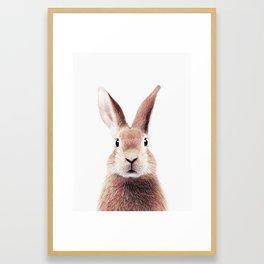 BUNNY RABBIT Framed Art Print