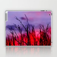 Colors to the West Laptop & iPad Skin