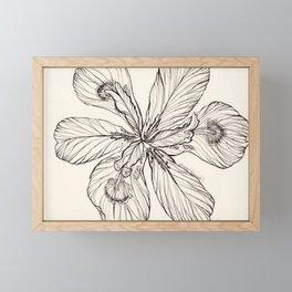 Floral Ink Illustration Framed Mini Art Print