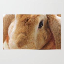 The Velveteen Rabbit Rug