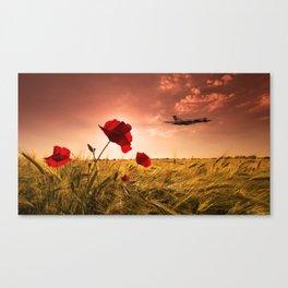 Vulcan Poppy Sunset Canvas Print