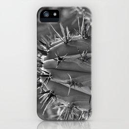 Reclamo al sol... serie 1/5 iPhone Case