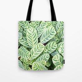 Botanical green white natural tropical leaves Tote Bag