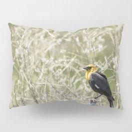 Yellow-headed Blackbird, No. 2 Pillow Sham