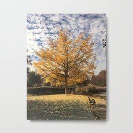Goodale Fall Metal Print