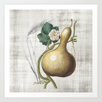 gourd Art Print