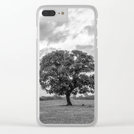 Nasik Clear iPhone Case