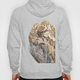 Chameleon With Sinister Facial Expression Isolated Hoody