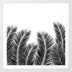 White Palm Skies Art Print
