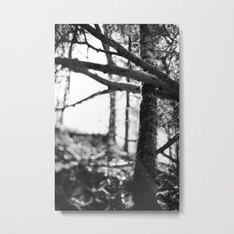 nature's grasp. Metal Print