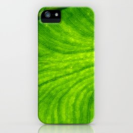 Leaf Paths iPhone Case