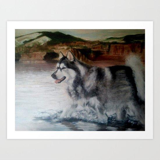 sketch study; malamute Art Print