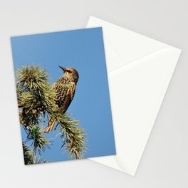 O My Starling, Clementine! Stationery Cards