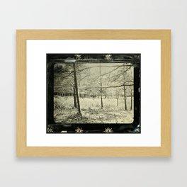 John's Horses Framed Art Print