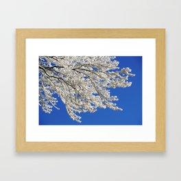 Hoarfrost 2 Framed Art Print