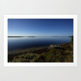 Swan Bay Art Print