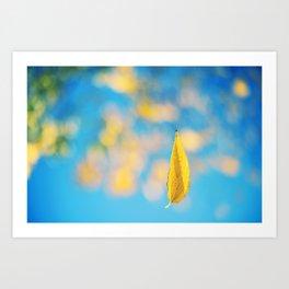 Yellow & blue Art Print