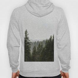 Forest Fog III - 89/365 Hoody