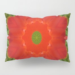 Concentric Nature Pillow Sham