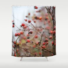 Winter Rosehips Shower Curtain