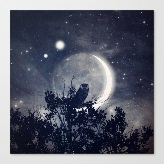 A Night With Venus and Jupiter Canvas Print