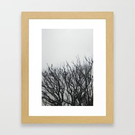 Scorched Branches Framed Art Print