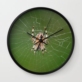 Spider On Web Wall Clock